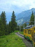 Berner Oberland, Wengernalpbahn 01. Traveling on the Wengernalpbahn from Kleine Scheidegg to Wengen through the Alps in the Burner (Bernese) Oberland area of Stock Photos