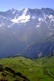 Bernese阿尔卑斯 库存图片