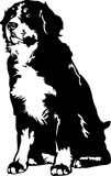 bernese собака mountaing Стоковые Фотографии RF