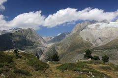 bernese alps Arkivfoto