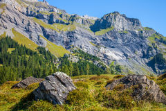 Bernese Alps II Royalty Free Stock Image