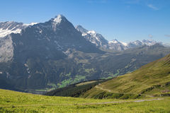 Eiger and Jungfrau. Mounts Eiger and Jungfrau from First, Grindelwald, Bernese Alps, Switzerland royalty free stock photos