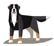 Bernese Mountain Dog minimalist image. On a white background royalty free illustration