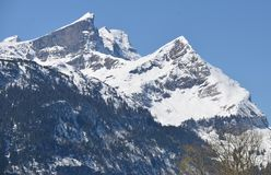 Swiss Alps - Bernese Mountains Grindelwald Eiger Jungfrau royalty free stock photo