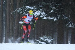 Bernhard Tritscher - cross country Royalty Free Stock Images
