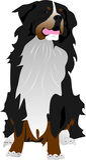 Bernhardiner-Hund Lizenzfreies Stockbild