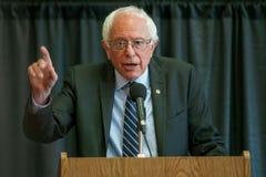 Bernie Sanders Obrazy Royalty Free