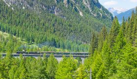 Bernina exprès Chemin de fer de Rhaetian Images libres de droits