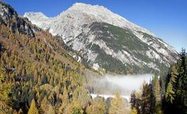 Bernina Express rails Royalty Free Stock Photos