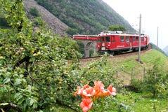 Bernina Express Train at Brusio on the Swiss alps Royalty Free Stock Photos