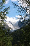 Bernina Glacier Royalty Free Stock Photo