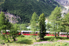 Bernina retic train Stock Image