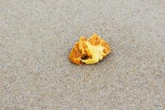 Bernsteinfarbig Bernstein auf dem feinen Sand stockbild
