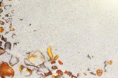 Bernsteinfarbig die Stücke des Bernsteines im Sand auf dem Strand stockfoto