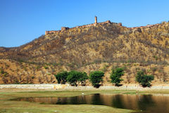 Bernsteinfarbiges Fort in Jaipur Stockbild