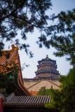 Beroemd de Zomerpaleis van de Keizer van de tempel van China in bomen, 2013, Peking, China Stock Foto's