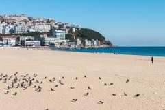 Beroemd en mooi strand Stock Foto