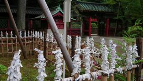 Beroemd Shinto-Heiligdom in Tokyo - Nezu Jinja in Bunkyo stock footage