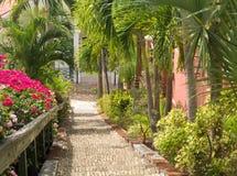 Beroemde 99 stappen Charlotte Amalie stock foto's
