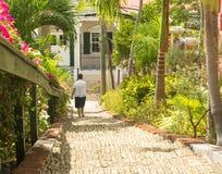 Beroemde 99 stappen Charlotte Amalie stock fotografie