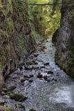 Beroemde canion van Galbena in Transsylvanië, Roemenië royalty-vrije stock afbeelding