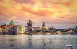 Beroemde Charles Bridge en toren, Praag, Tsjechische Republiek royalty-vrije stock foto