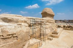 Beroemde Egyptische Sfinx in Giza van de achterkant stock foto
