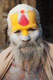 Beroemde geschilderde sadhu (heilige mens) over Pashupatinath - 16 van december 2013, Katmandu, Nepal Stock Afbeelding