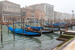 Beroemde Gondels op Grand Canal stock afbeelding