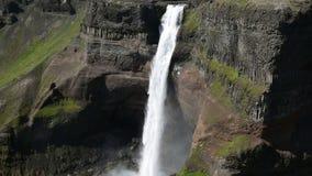 Beroemde Haifoss-waterval in zuidelijk IJsland stock videobeelden