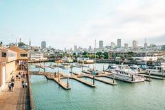 Beroemde Pijler 39 met zeeleeuwen in San Francisco, de V.S. royalty-vrije stock foto's