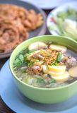 Beroemde tofu soep met groenten en varkensvlees Stock Afbeeldingen