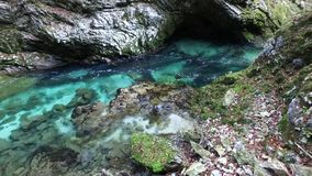 Beroemde Vintgar-dalingen van Slovenië stock video