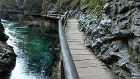Beroemde Vintgar-dalingen van Slovenië stock footage
