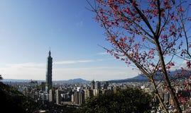 Beroemde wolkenkrabber 101 en gebouwen in Taipeh Royalty-vrije Stock Foto's
