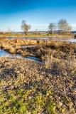 Berounka-Fluss zwischen Radotin und Cernosice Stockfotos