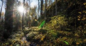?berraschende Beschaffenheit von Karelien, Fotos des Sonnenaufgangs und des Sonnenuntergangs, Nordlichter stockfotos