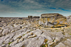 Burren Coast, Ireland Royalty Free Stock Photo