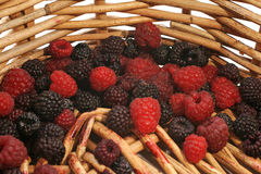 Berries. Assorted berries in a weaved basket Royalty Free Stock Photo