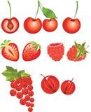 Berries Royalty Free Stock Photos