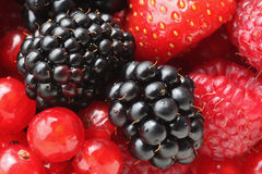 Berries Royalty Free Stock Photo
