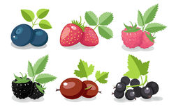 Berries. The collection of icons of summer berries vector illustration