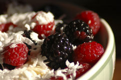 Berries. Blackberries and raspberries in a bowl. Shallow depth of field. High contrast royalty free stock photos