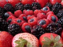 Berries x 4. Blackberries, blueberries, raspberries, strawberries Royalty Free Stock Images