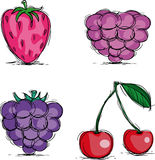 Berries. Four berry icons, vector illustration Royalty Free Stock Photos
