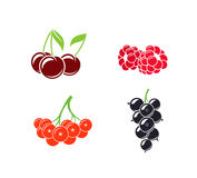 Berries. Abstract fruit on white background Royalty Free Stock Images