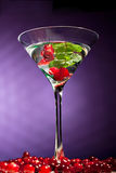 Berries alcohol  coctail Royalty Free Stock Images
