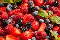 Berries Stock Image