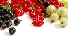 Berries background Royalty Free Stock Photography