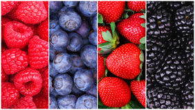 Berries Background Collection. Raspberry, Blueberry, Blackberry Royalty Free Stock Photo